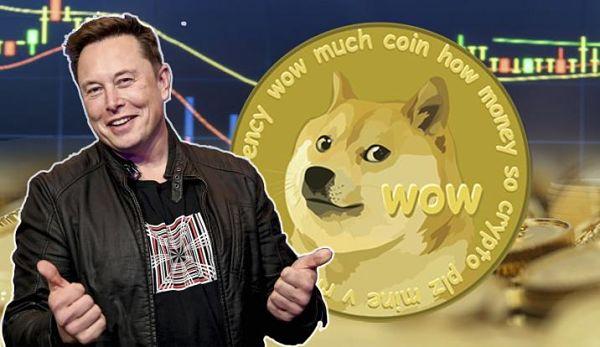 Adakah Dogecoin Pelaburan Yang Baik? Melonjak 1,000% Dalam Sebulan!