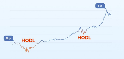 Panduan Cryptocurrency Bagi Newbie   Apakah Strategi HODL