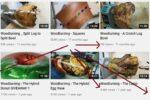 Cara Menjadi Youtuber Dalam 14 Langkah Mudah